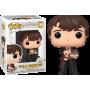 Figurine Funko POP Neville Longbottom with Monster Book 116 Harry Potter